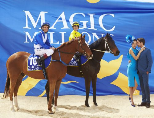 Important information for the 2018 Magic Millions Raceday