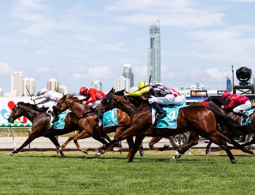 Gold Coast Turf Club News