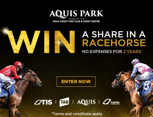 Win your share in a racehorse