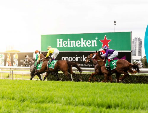 Heineken Gold Coast Cup Wrap Up